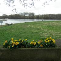 Das Rheinufer an der Hafeneinfahrt