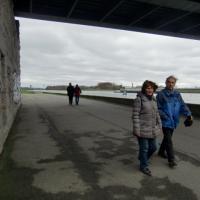 ... zu den Rheinterrassen